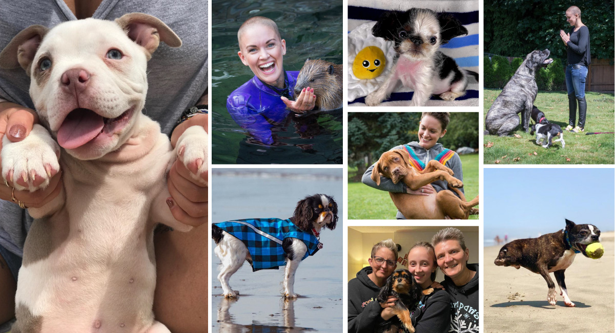 The Animals and People of Panda Paws Rescue